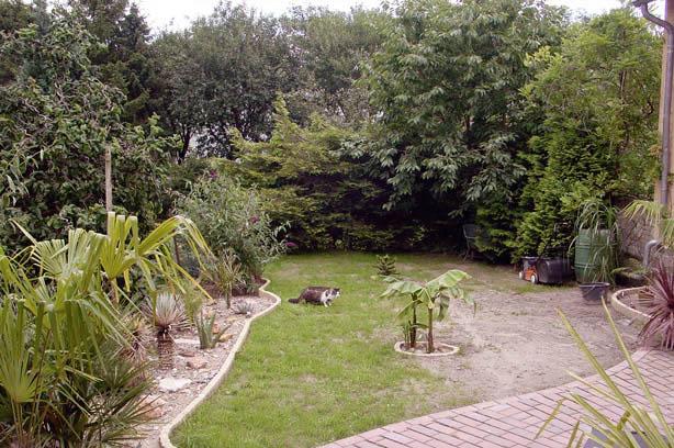 Seitengarten-neu